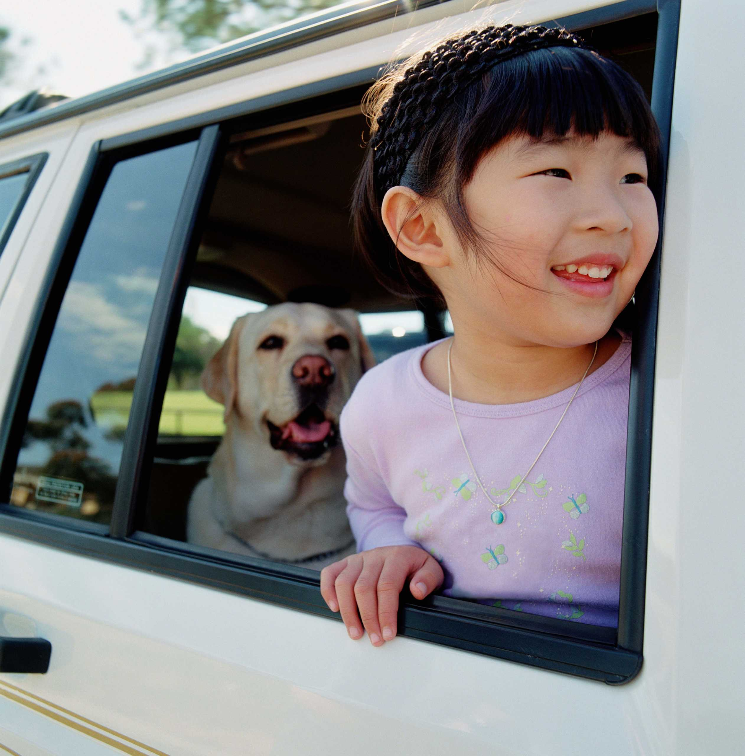 Young girl (3-5) looking out car window, dog in background