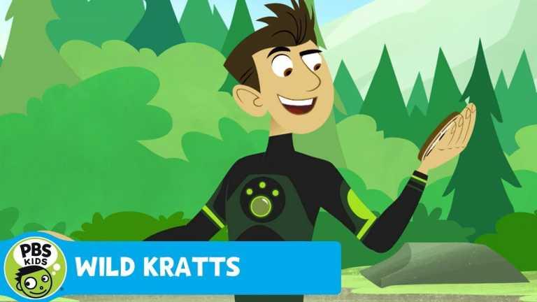 WILD KRATTS | Grizzly Power! | PBS KIDS