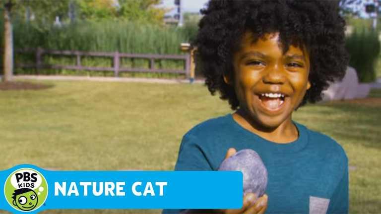NATURE CAT | Rocks | PBS KIDS