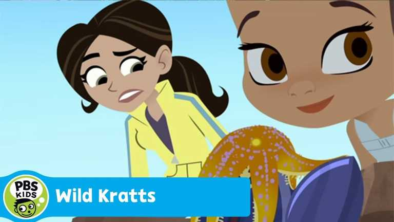 WILD KRATTS | Barnacle Powers | PBS KIDS