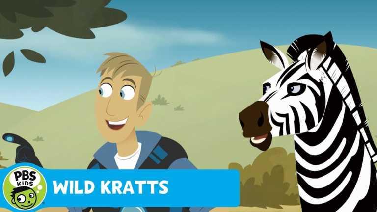 WILD KRATTS | Black or White | PBS KIDS