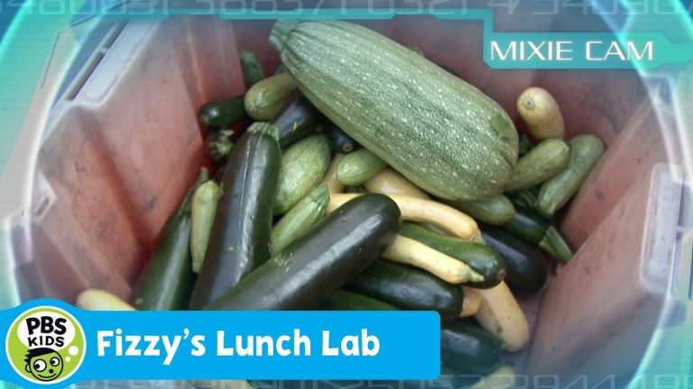 FIZZY'S LUNCH LAB | Mixie Reports: Vegetables | PBS KIDS