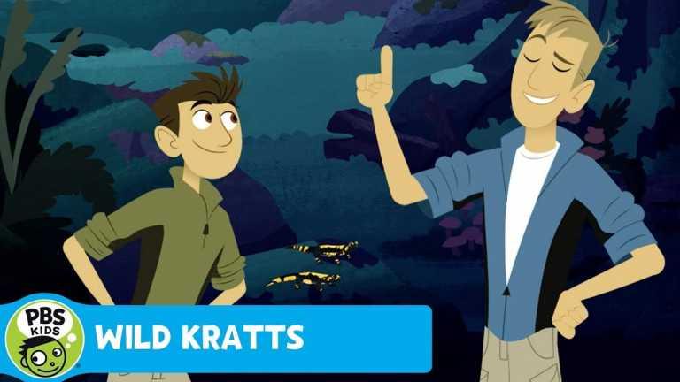 WILD KRATTS | Not Fire Proof | PBS KIDS