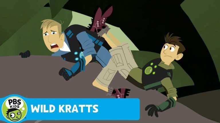 WILD KRATTS | Indian Mongoose! | PBS KIDS