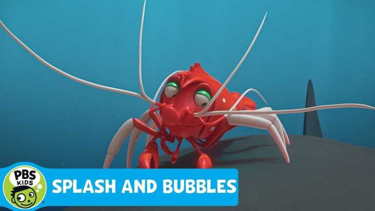 SPLASH AND BUBBLES | See the Kelp… Be the Kelp | PBS KIDS