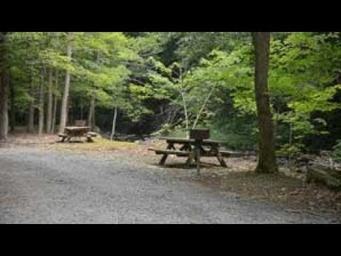 Whetstone Gulf | Park It! Explore the Outdoors | WPBS Short Flix