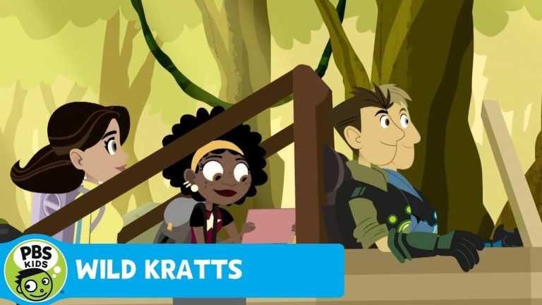 WILD KRATTS   Creature Mission!   PBS KIDS
