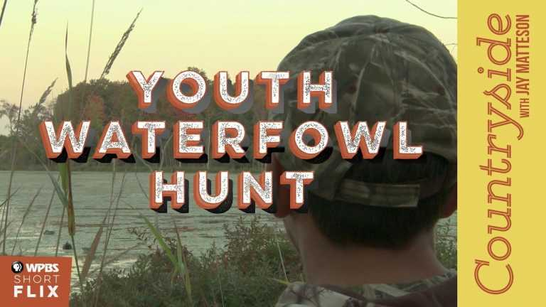 Youth Waterfowl Hunt | Countryside with Jay Matteson