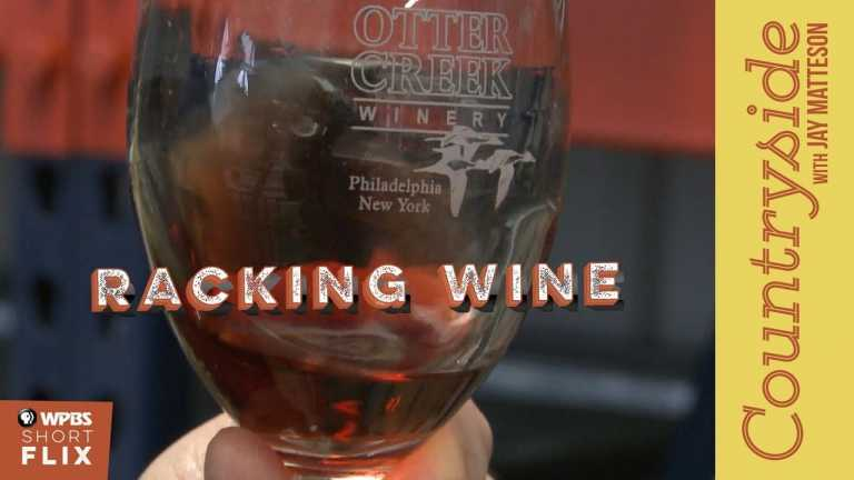 Racking Wine   Countryside with Jay Matteson   WPBS Short Flix