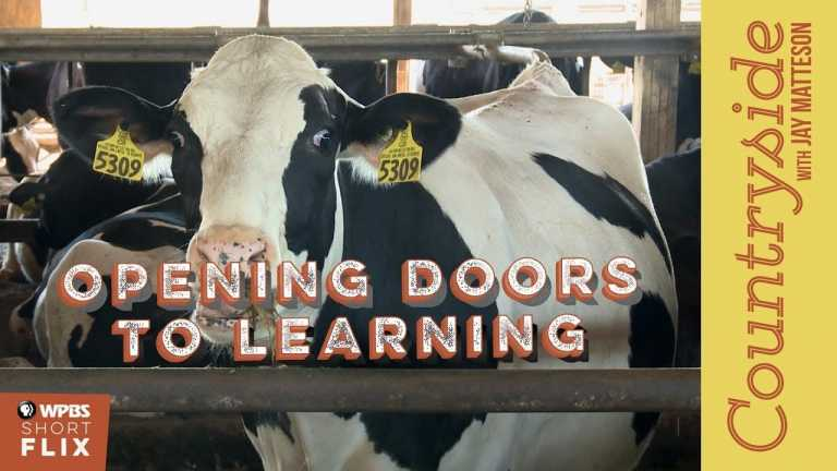 Opening Doors to Learning | Countryside with Jay Matteson | WPBS Short Flix