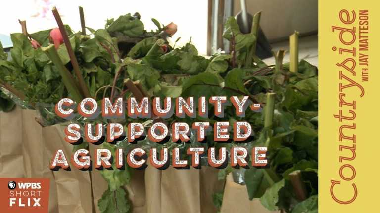 Community Supported Agriculture | Countryside with Jay Matteson | WPBS Short Flix
