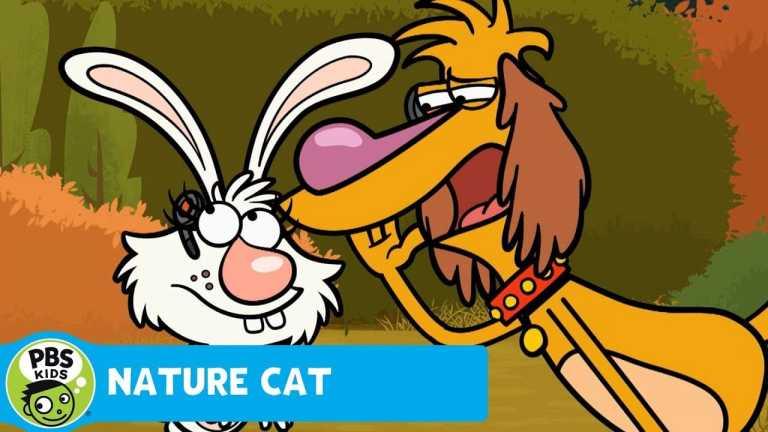 NATURE CAT | Super Secret Spy Mission! | PBS KIDS