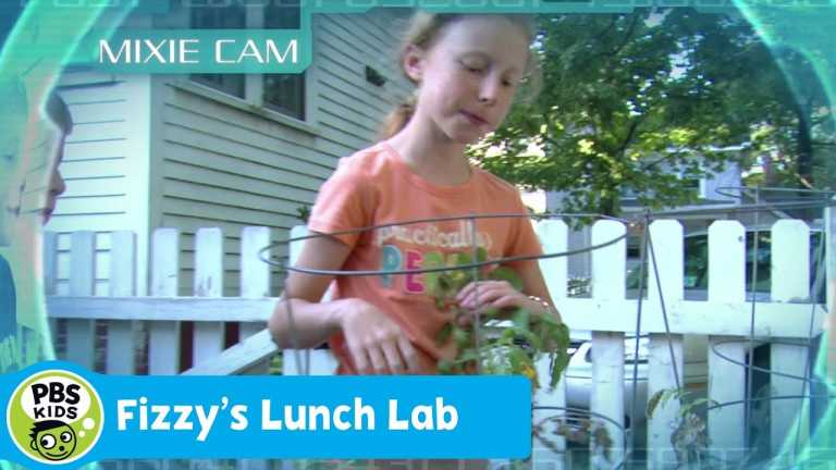 FIZZY'S LUNCH LAB | Mixie Reports: Family Meal Time | PBS KIDS
