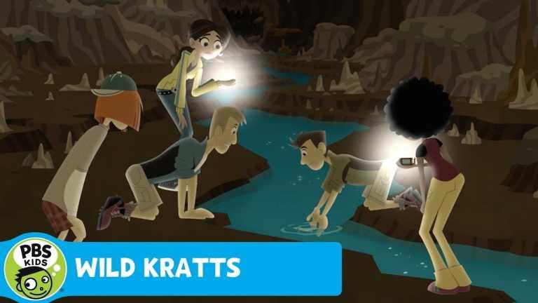 WILD KRATTS | Meeting the Human Fish | PBS KIDS