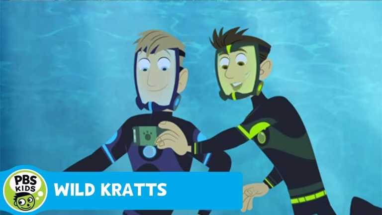 WILD KRATTS | Swimming with the Lobster | PBS KIDS