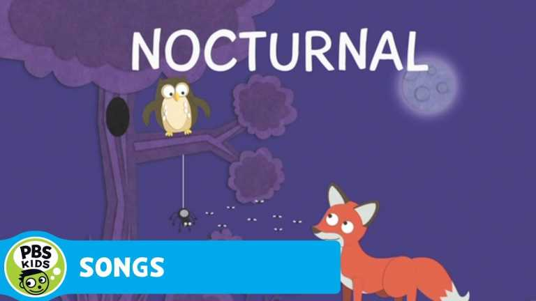 SONGS | Nocturnal, Diurnal, Which One Are You? | PBS KIDS