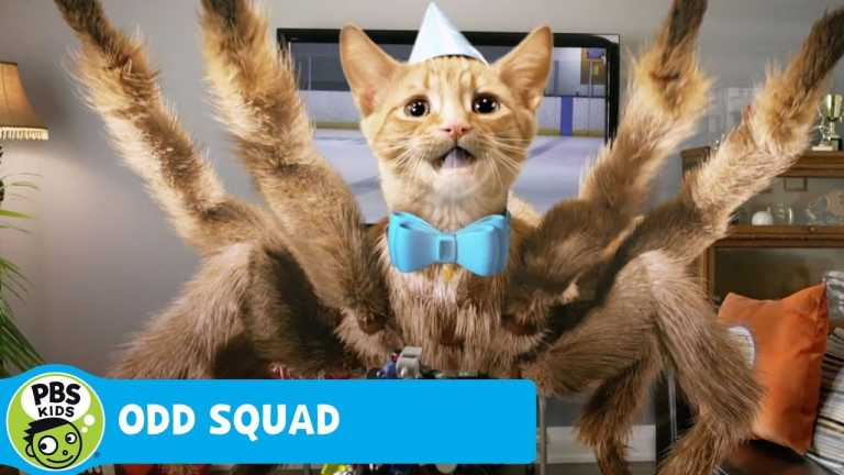 ODD SQUAD | Spidercat Found | PBS KIDS