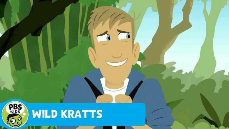 WILD KRATTS | Jungle Adventure | PBS KIDS