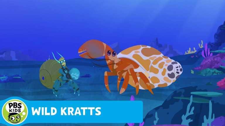 WILD KRATTS | Shell Exchange | PBS KIDS