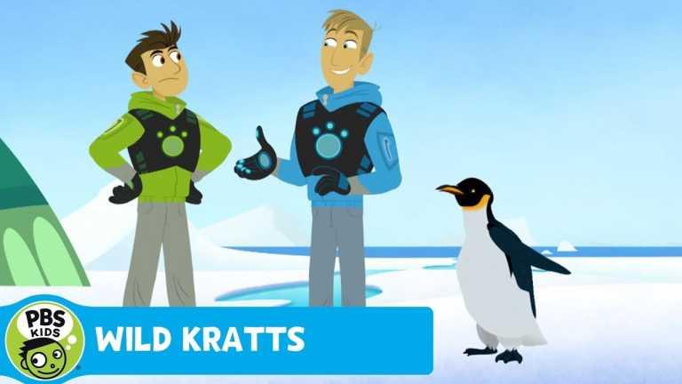 WILD KRATTS   Penguin March   PBS KIDS