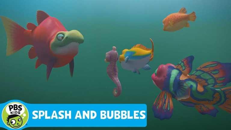 SPLASH AND BUBBLES | Sal the Super-Fish | PBS KIDS