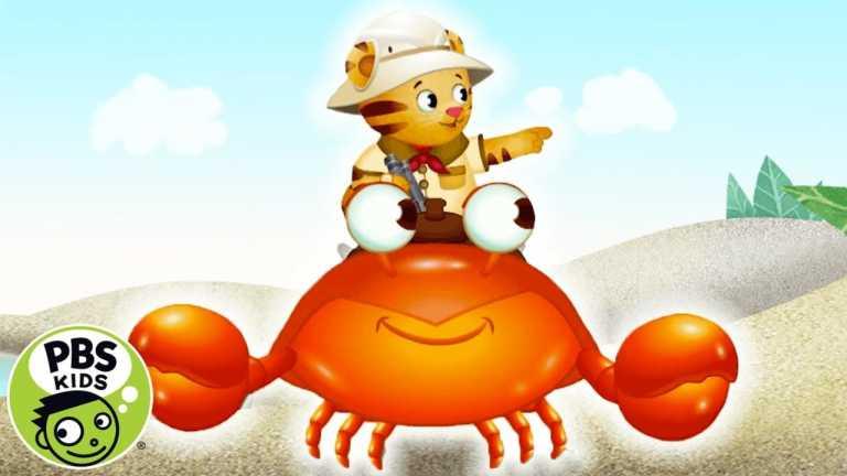 Daniel Tiger's Neighborhood | 🎶Crabby Crab Ride 🎶| PBS KIDS