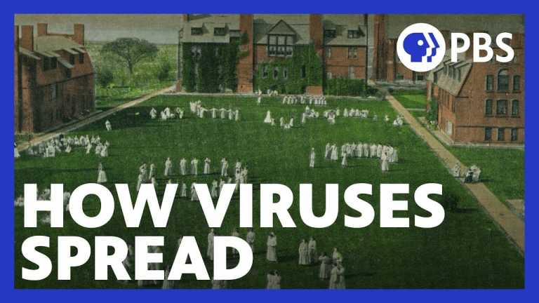 How Networks Help Diseases Spread | Niall Ferguson's Networld | PBS