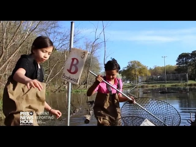 Protecting green space through hands-on learning