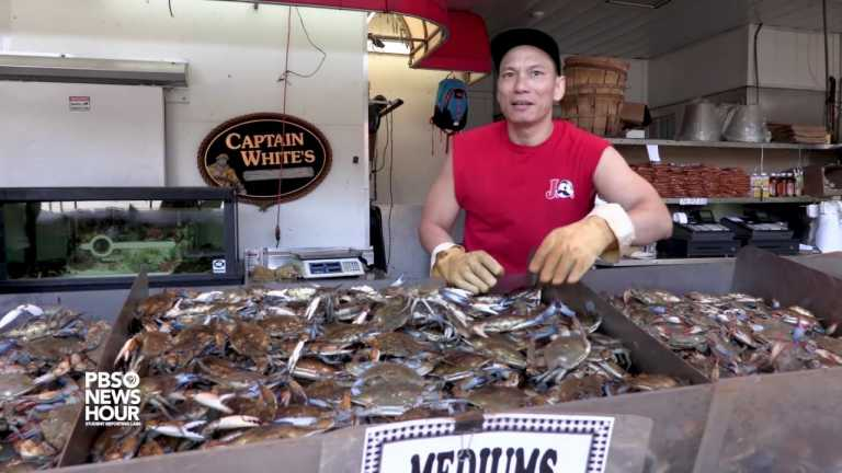 Life in DC's Historic Fish Market