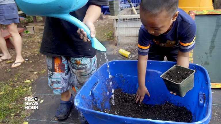 Homeless in paradise: a garden program helps Hawaiian youth gain control
