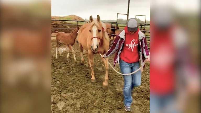 Idaho teens keep working during COVID-19