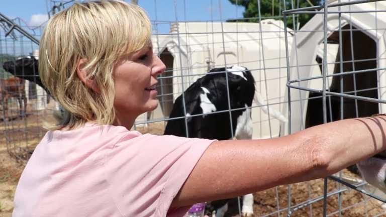 COVID-19 calls into question the future of family farms