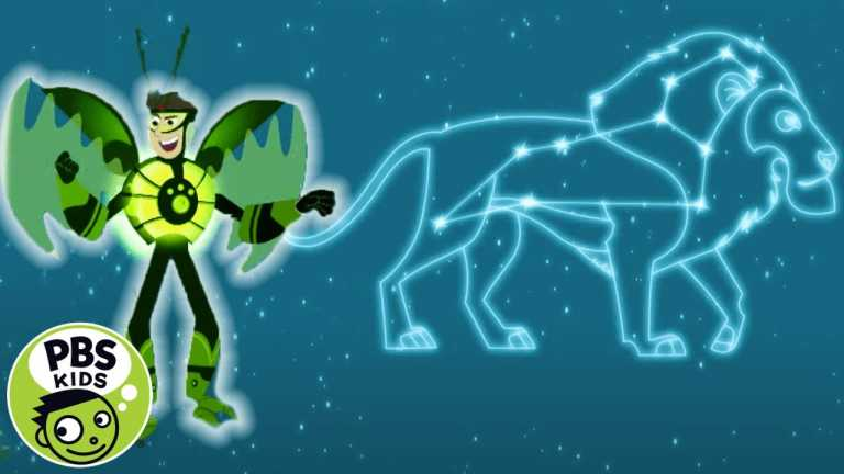Wild Kratts   What's Your Favorite Star Pattern?   PBS KIDS