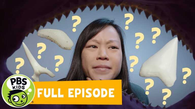 Mega Wow | Why Are Shark Teeth Different? | PBS KIDS