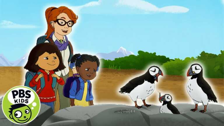 Molly of Denali | Molly Goes to Puffin Island! | PBS KIDS