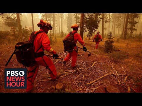 California prison inmates become a critical resource for fighting wildfires